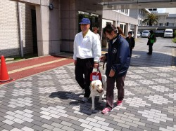 盲導犬の体験会